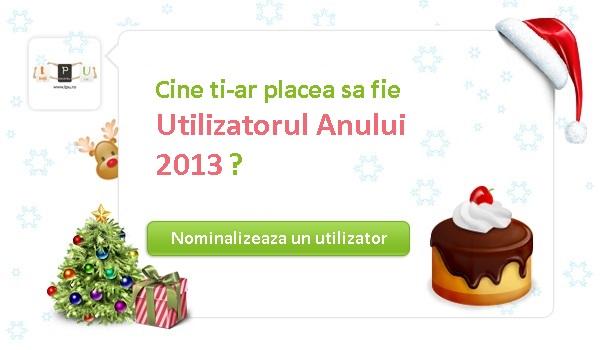 Userul Anului 2013